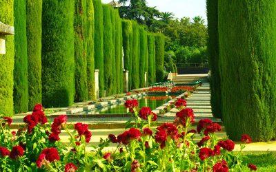 Visitar Córdoba en un Fin de Semana